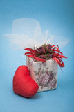 Love gift. Which is the most appropriate gift for a loved one Stock Image