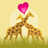 Love a giraffe Royalty Free Stock Photo