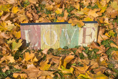 Love in the grass. A sign saying that love is in the fallen autumn leaves Royalty Free Stock Images