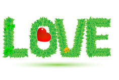 Love of green leaves Stock Images