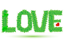 Love of green leaves Royalty Free Stock Image