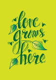 Love grows here. Royalty Free Stock Images