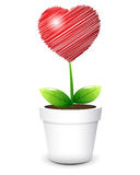 Love growth. Emotions & Feelings  Love  growth on white background Stock Images