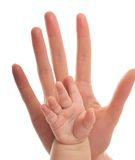 Love hand Royalty Free Stock Image