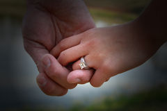 Love in hands Stock Photography