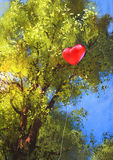 Love heart balloon stuck in a tree branches Stock Photography