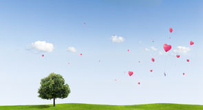 Love heart balloons over field Stock Photography
