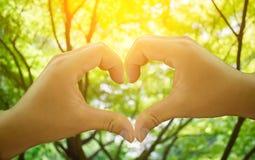 hand Love heart Royalty Free Stock Photos