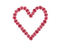 Love heart made of many red roses Royalty Free Stock Image