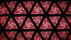 Love heart pink red green and black line wallpaper Stock Images