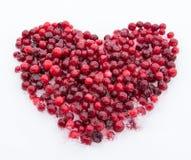 Love Heart Royalty Free Stock Photography
