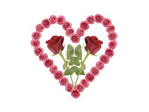 Love heart with rose Royalty Free Stock Photography