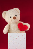 Love Heart Teddy Bear in a box Stock Images
