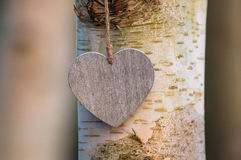 Love heart tree trunk Stock Photo