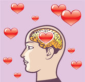 Love Hearts in the Mind vector Stock Photo