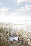 Love hearts on sand dunes in summer Stock Image