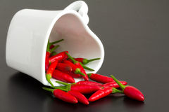 Love is hot. Red chillies in a heart shape cup Stock Images