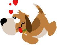 Love hound Stock Photos