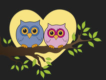Love. Illustration with two owls and heart moon Stock Images