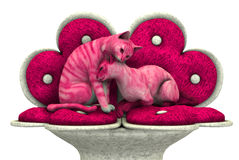 Love Kitties - includes clipping path Stock Photography