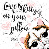 Love is a kitty on your pillow, love quote about pets. Vector outstanding lettering, calligraphy, motivational typography post card. Cute, friendly, smiling Stock Photos