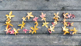 love leaves on a table in autumn Stock Photo