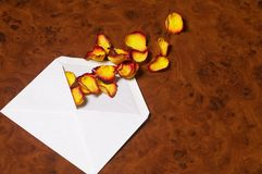 Love letter - Liebesbrief. White envelope with yellow-red rose petals on noble wooden desk - weisses Briefkuvert mit gelb-roten Rosenblaettern auf edlem Stock Photo