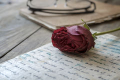 Love letter and rose Royalty Free Stock Photos