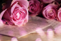 Love letter with roses Stock Images