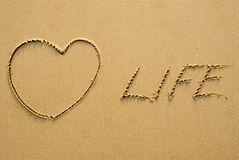 Love life Royalty Free Stock Photos