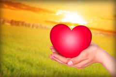 Love the life. Hand carry the heart royalty free stock images