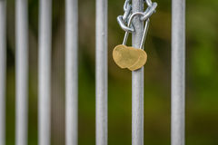 Love lock locked on the bridge in Latvia. Wedding, honeymoon. Stock Photography