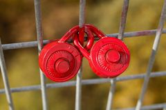 Love Locks on a Fence stock images