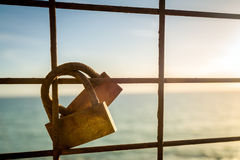 Love locks hanging on the fence Stock Image