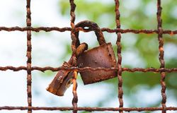 Love locks, symbol for long life. In marriage and love stock photos