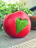 Love love love. Mint heart in the apple Royalty Free Stock Photo