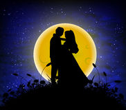 Love in the lunar night sky Royalty Free Stock Images