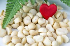 Love Macadamia. Heap of Macadamia nuts and a heart on the white background Royalty Free Stock Photos