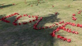 Love made of kapok petal in Xiamen University, China Royalty Free Stock Images