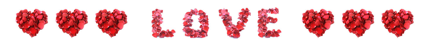 Love made of rose isolated on white background stock image