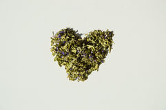Love for mallow herbal tea. Isolated closeup Royalty Free Stock Photography