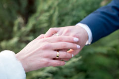 Love and marriage. Wedding ceremony. Bride dresses gold ring on finger of groom Stock Images