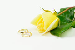 Love and marriage Stock Photography