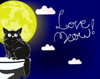 Love meow. A loving cute cat. Love meow. Cartoon illustration. A loving cute cat under the moon Royalty Free Stock Images
