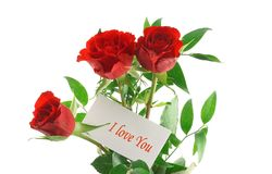 Love message. Three red roses with I love you message Stock Photos