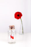 Love message in a bottle. Roll of white paper with red thread and red gerbera flower on a white background. Saint Royalty Free Stock Images