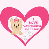 Love message to your pet. Yorkshire terrier cartoon illustration. Icon with tiny puppy of yorkshire terrier Stock Images