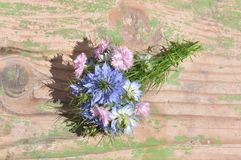 Love in a mist Nigella damascena and carnations. Detail of Love-in-a-mist Nigella damascena flower Royalty Free Stock Photos