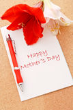 Love For Mom Royalty Free Stock Images