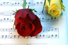 Love of music. Yellow and Red rose on top of music notes stock photo